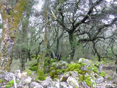 Tamajón; Almiruete;Retiendas;agencias de trekking grupos viajes viajes a la sierra viaje de semana